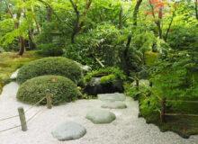 projekty terenów zieleni