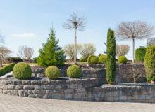 projekty zieleni przyulicznej